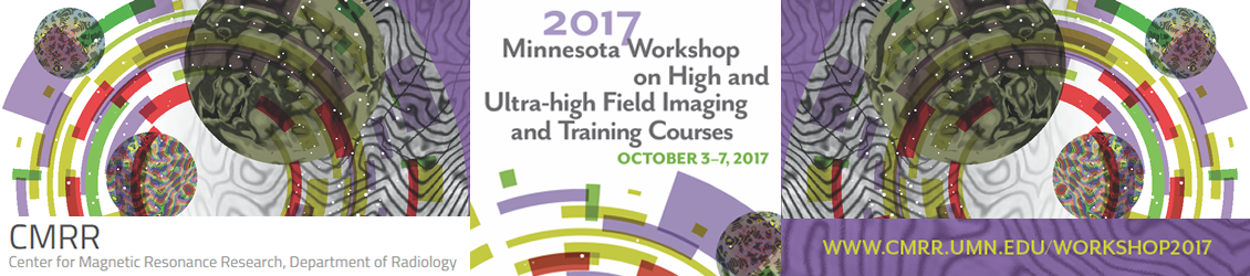 2017 Minnesota Workshop on High and Ultra-High Field Imaging