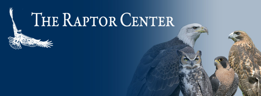The Raptor Center